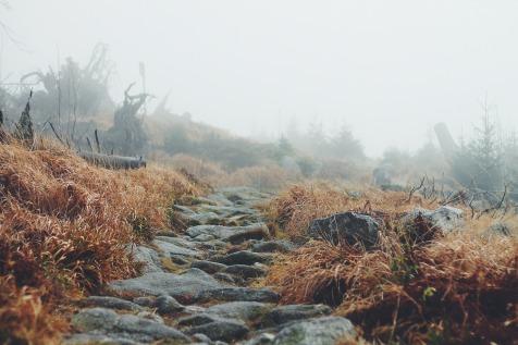 landscape-691150_1920